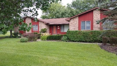 7891 Peter Hoover Road, New Albany, OH 43054 - #: 219017201