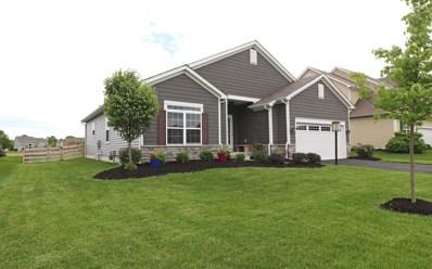 599 Buena Park Drive, Delaware, OH 43015 - MLS#: 219017883