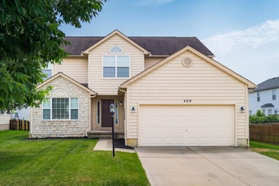 429 Pruden Drive, Pickerington, OH 43147 - #: 219019629