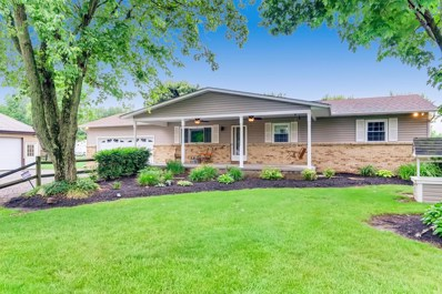 11196 Beaver Road NW, Johnstown, OH 43031 - #: 219021984