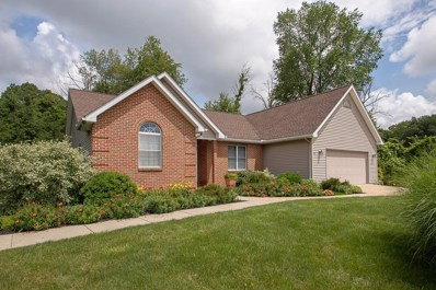 424 Fancy Court, Somerset, OH 43783 - #: 219022641