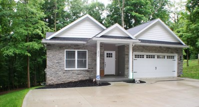 373 Ridgeland Circle, Howard, OH 43028 - #: 219022729
