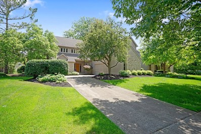 7274 Coventry Woods Drive, Dublin, OH 43017 - #: 219022781