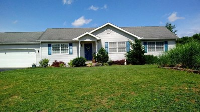 1076 Orr Road, Chillicothe, OH 45601 - #: 219022810