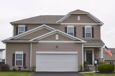 231 Weeping Willow Run Drive, Johnstown, OH 43031 - MLS#: 219022821