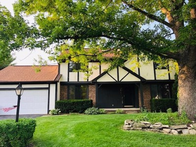 1654 Otter Court, Grove City, OH 43123 - #: 219024109