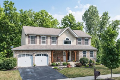 55 Woodhaul Court, Delaware, OH 43015 - #: 219024174