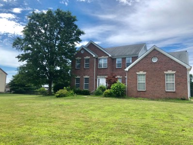 3762 Hollenback Road, Lewis Center, OH 43035 - MLS#: 219025443