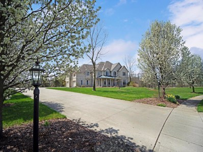 7305 Optimara Drive, Pickerington, OH 43147 - #: 219026122