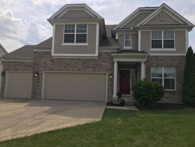 5739 Little Red Rover Street, Groveport, OH 43125 - #: 219026933