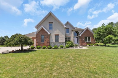7706 Havens Court W, Blacklick, OH 43004 - #: 219027734