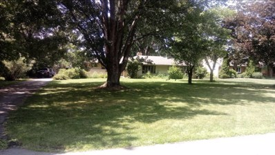5029 Henderson Heights Road, Columbus, OH 43220 - #: 219028219