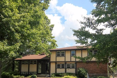 10690 Lithopolis Road NW, Canal Winchester, OH 43110 - #: 219028509