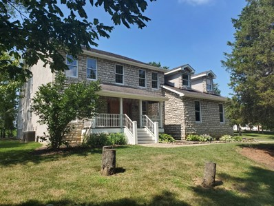 11267 Cedar Creek Drive NW, Canal Winchester, OH 43110 - #: 219028716