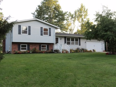 10631 Miller Road NW, Johnstown, OH 43031 - #: 219029044
