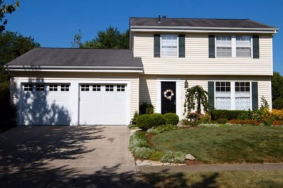 8493 Nuthatch Way, Columbus, OH 43235 - #: 219029096