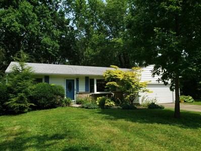 290 Kaye Drive, Pickerington, OH 43147 - #: 219029211