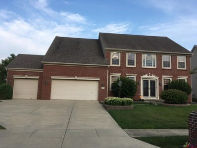 7809 Shady Maple Drive, Canal Winchester, OH 43110 - #: 219029418
