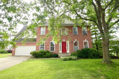 220 Fallen Timbers Court, Canal Winchester, OH 43110 - #: 219029551