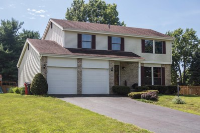 9803 Woodsfield Circle N, Pickerington, OH 43147 - #: 219030148