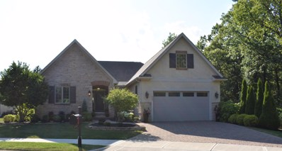 487 Junia Court, Powell, OH 43065 - #: 219030316