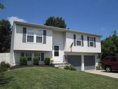 6900 Barker Drive, Canal Winchester, OH 43110 - #: 219030427