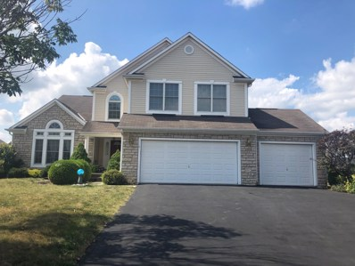 4384 Houser Drive, Lewis Center, OH 43035 - #: 219031161