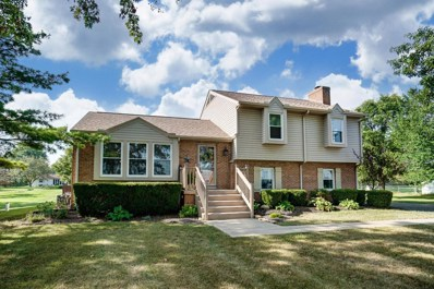 16707 County Home Road, Marysville, OH 43040 - #: 219031258