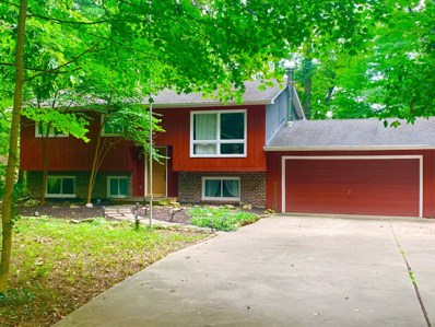 10589 Lithopolis Road NW, Canal Winchester, OH 43110 - #: 219031610