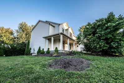 9527 Lynns Road SW, Etna, OH 43062 - #: 219035361