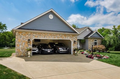 180 Monebrake Drive, Pickerington, OH 43147 - #: 219035517