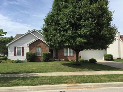 235 Chesterville Court, Canal Winchester, OH 43110 - #: 219035525