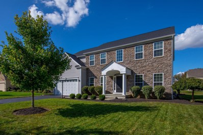 507 Braumiller Crossing Drive, Delaware, OH 43015 - #: 219036345