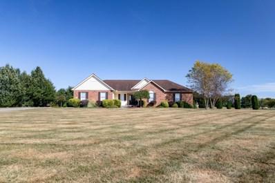 4494 Meadowgrove Drive, Carroll, OH 43112 - #: 219036948