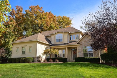 4309 Yellow Wood Drive, Dublin, OH 43016 - #: 219037231