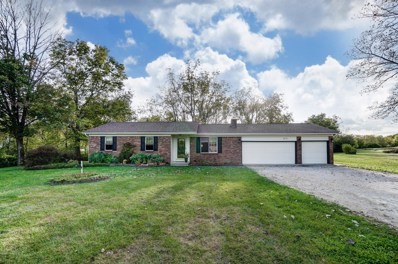 11955 Elgin Drive, Orient, OH 43146 - #: 219038699