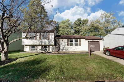5677 Bashaw Drive, Westerville, OH 43081 - #: 219040500