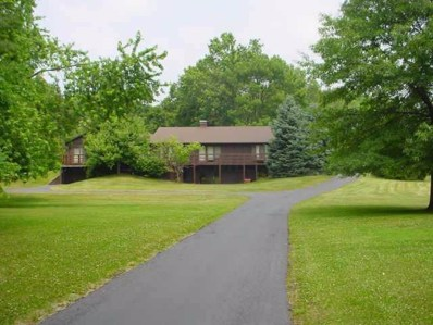 14666 Cleveland Road SW, Pataskala, OH 43062 - #: 219040741