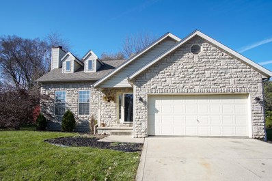 250 Daventry Court, Canal Winchester, OH 43110 - #: 219041220