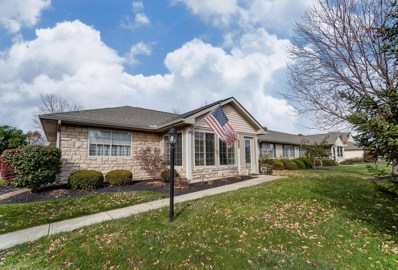 234 Pioneer Circle, Pickerington, OH 43147 - #: 219041725