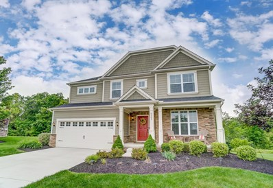 9583 Crabapple Court, Plain City, OH 43064 - #: 219044256