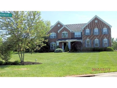 1247 MEADOWGATE Place, Goshen Twp, OH 45140 - #: 1449326