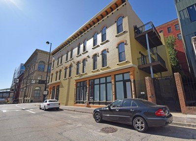 411 PLUM Street UNIT 201, Cincinnati, OH 45202 - MLS#: 1565596