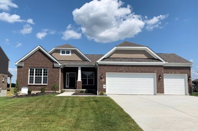 6093 MAXFLI Lane UNIT 102, Deerfield Twp., OH 45040 - #: 1584587