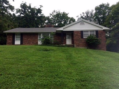 6031 CRITTENDEN Drive, Anderson Twp, OH 45244 - MLS#: 1596118