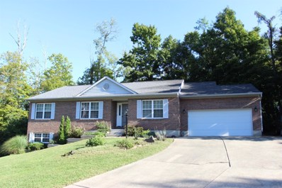436 AUXIER Drive, Union Twp, OH 45244 - MLS#: 1596382