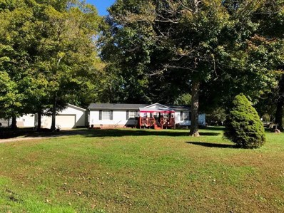 7016 PINE Trail, Paint Twp, OH 45133 - #: 1600121