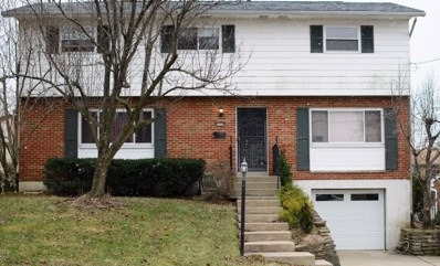 4309 FAIRDALE Court, Delhi Twp, OH 45238 - MLS#: 1607516