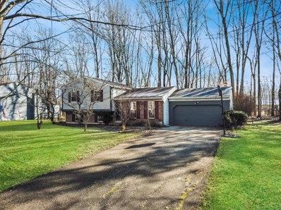 6098 DONNA JAY Drive, Miami Twp, OH 45140 - #: 1609185
