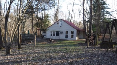 12164 SHORE Drive, Paint Twp, OH 45133 - #: 1611856